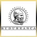 budureasca - luxury wines 1 logo